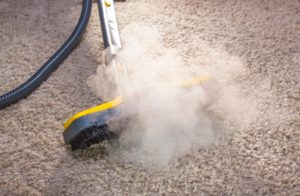 Affordable Carpet Cleaning in Atlanta